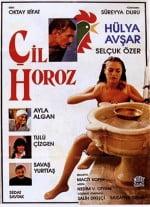 cil.horoz.afis