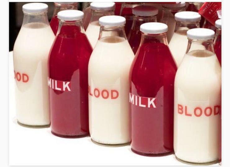 Öykü Palas 3: Süt